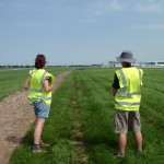 Airport skylark survey. Photo by HGYoung