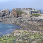 Fort Clonque, Alderney. Photo by Alderney Wildlife Trust