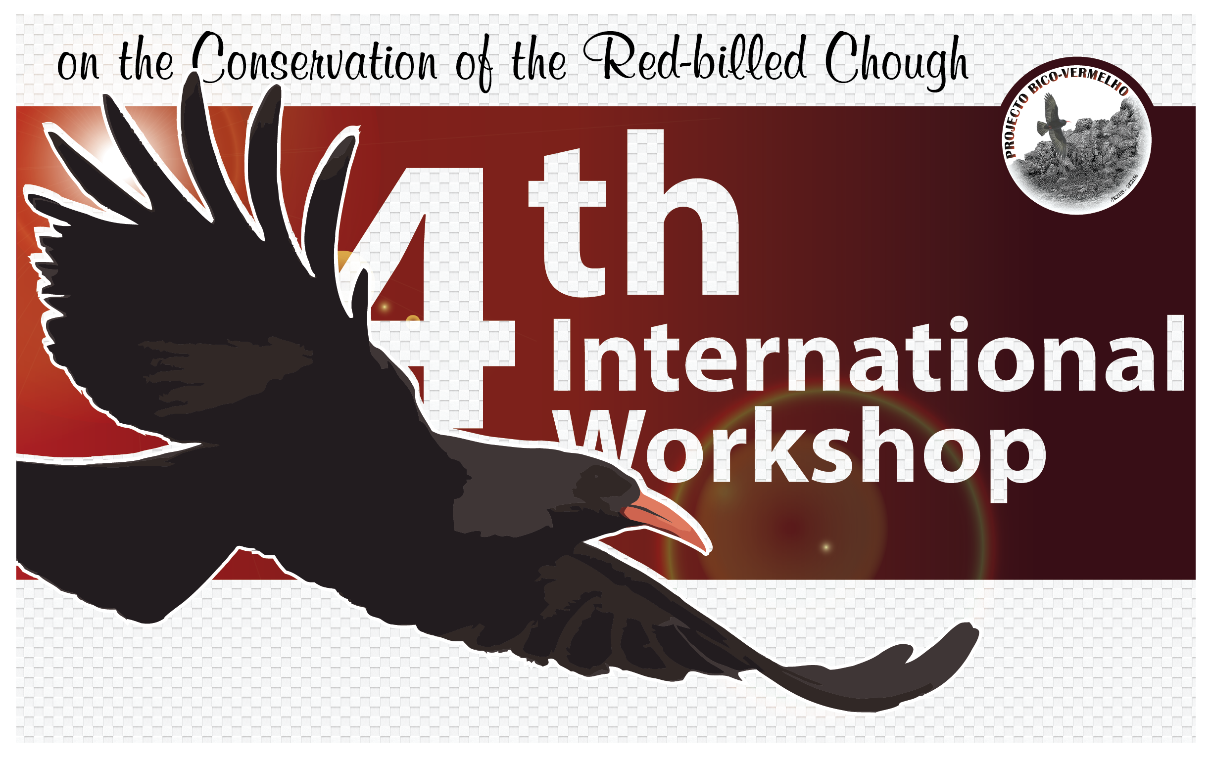 4th International Chough Workshop. Photo by www.diogocarvalho.pt