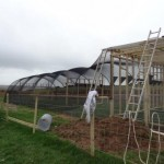 Progress on release aviary. January 2013. Photo by Liz Corry