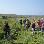 Liz introduces the choughs on the BOTE and AfW spring walk, May 2013. Photo by Mary Davies