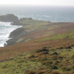 Calf of Man. Photo courtesy of Manx Heritage