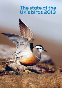 State of UK birds 2013 cover
