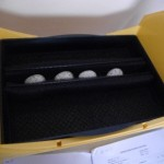 Four of the eggs set in the incubator. Photo by Liz Corry