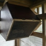 A mesh door was attached to the next box so the chicks could be shut securely in at night. Photo by Liz Corry