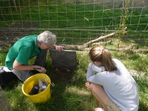 Alison Hales shows Harriet how they provide wild insects to the chough chicks. Photo by Liz Corry