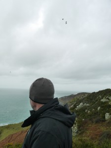 Tony Cross watching the choughs for cllues as to where they might nest. Photo by Liz Corry