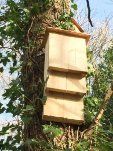 Kent bat box