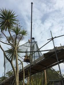 SORG crane Glynn Bower (2)