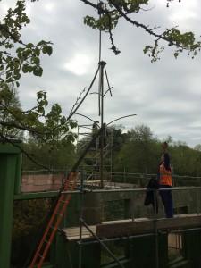 SORG crane Glynn Bower (4)