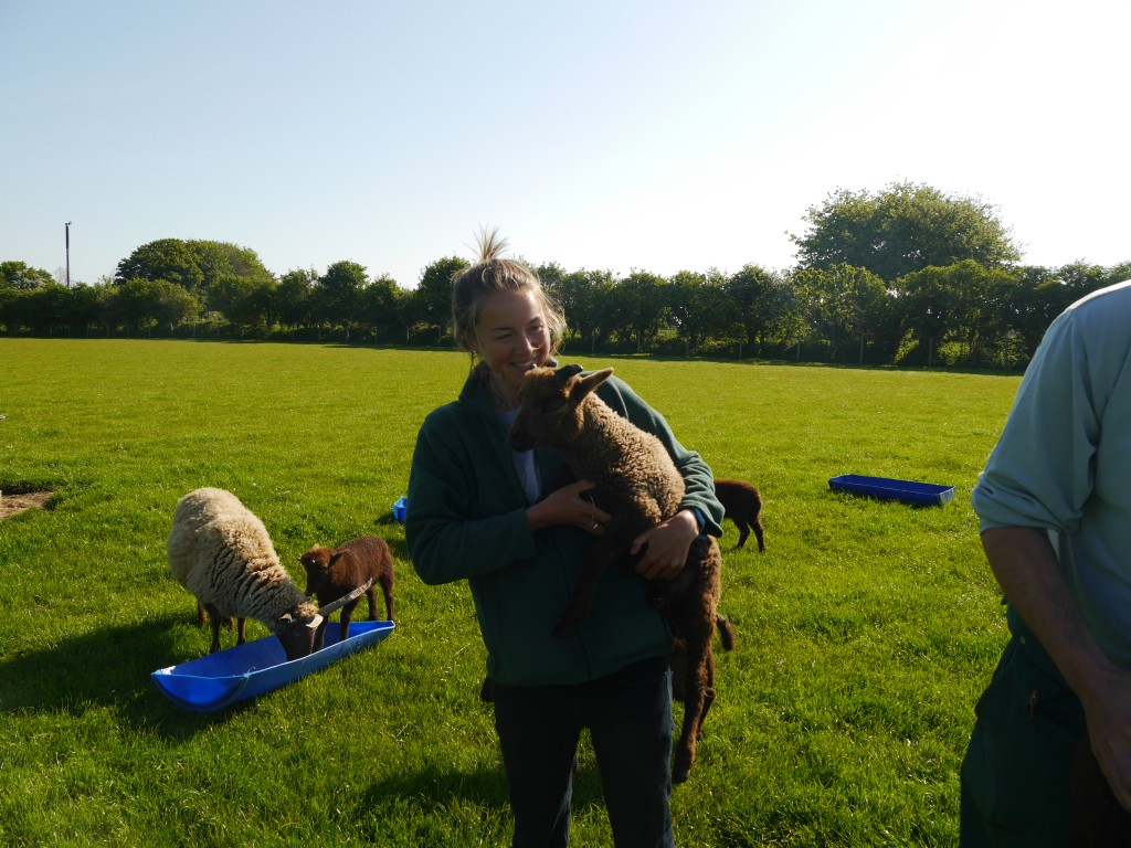 Part-time shepherd. All lamb cuddling carried out under license. Photo by Liz Corry.