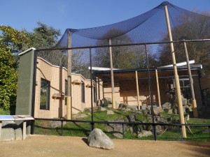 Display aviary at Durrell re-opens. Photo by Liz Corry