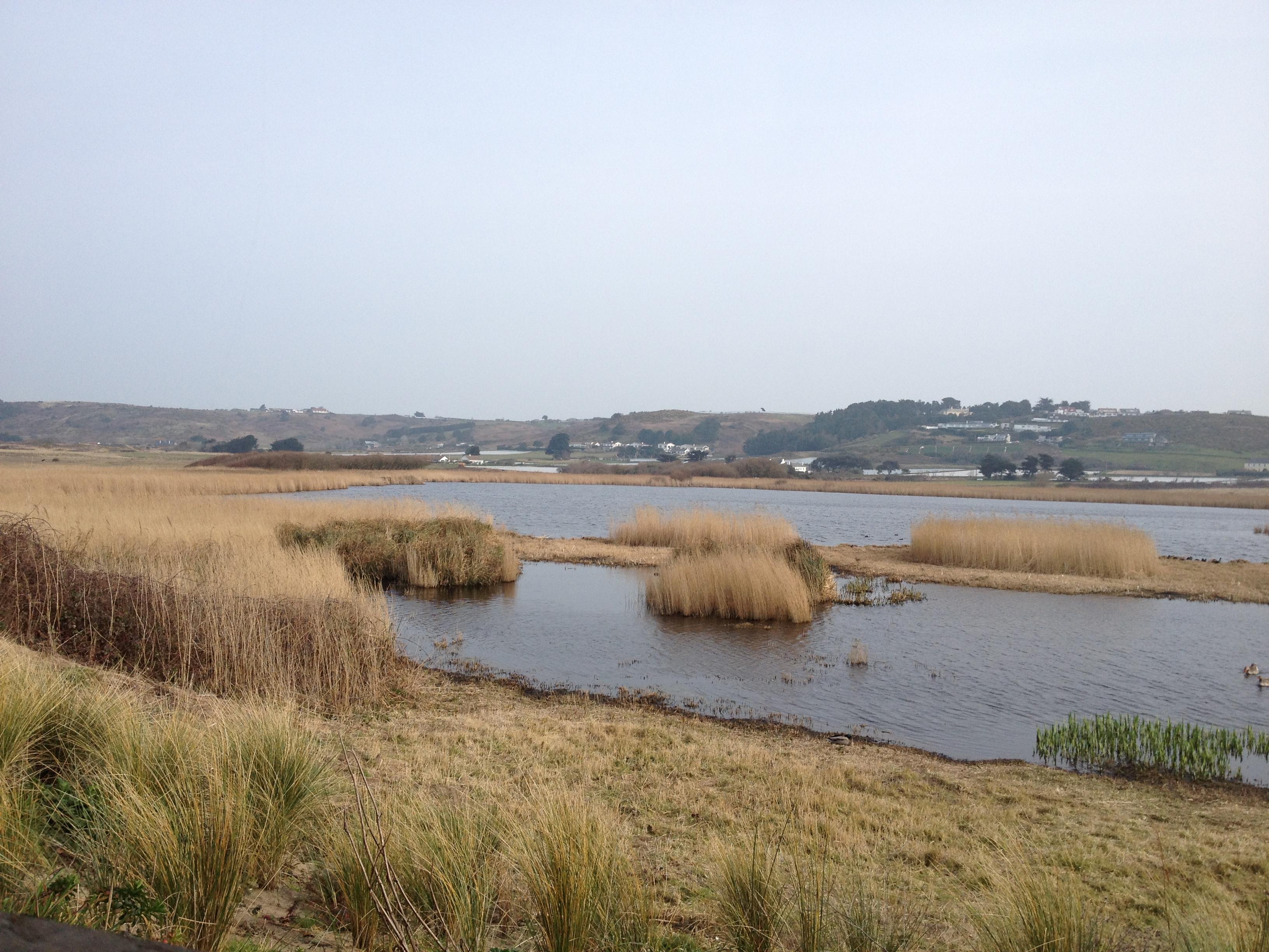 St. Ouen's Pond2