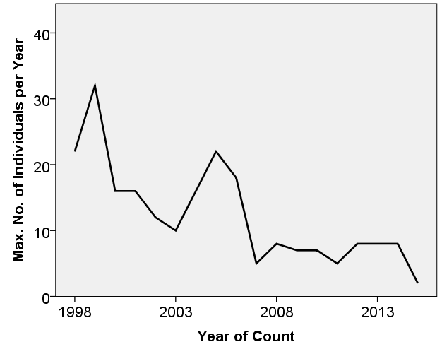 Population-development of Atlantic puffin on Jersey between 1998 and 2015.