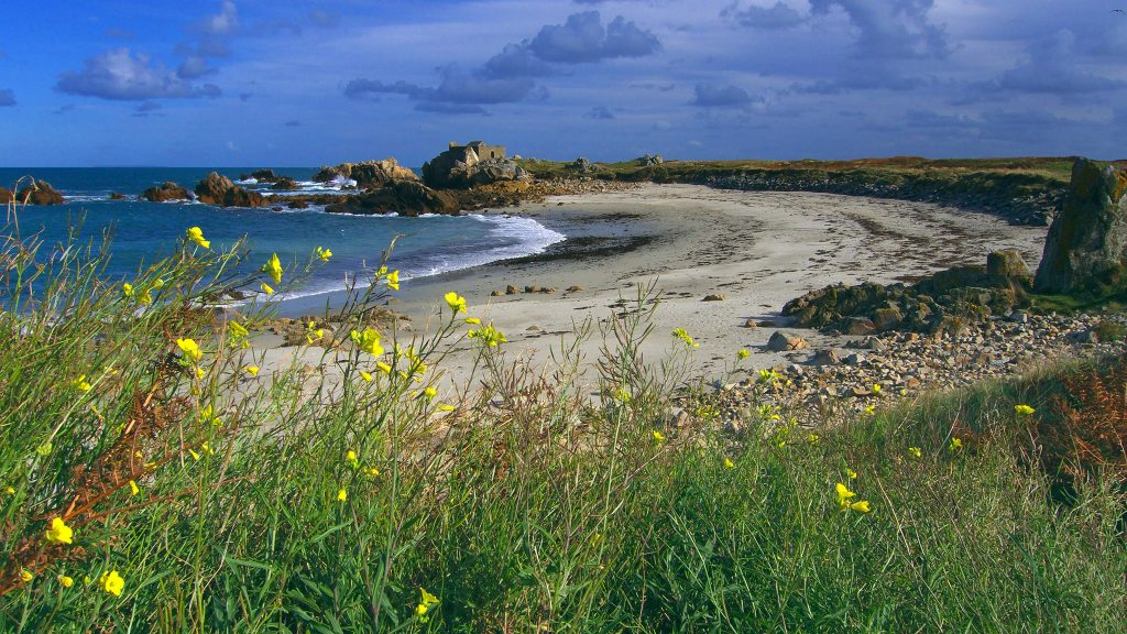 guernsey-2-photo-by-barry-wells