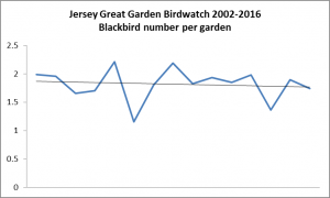 Blackbird. Garden Bird Watch 2002-2016